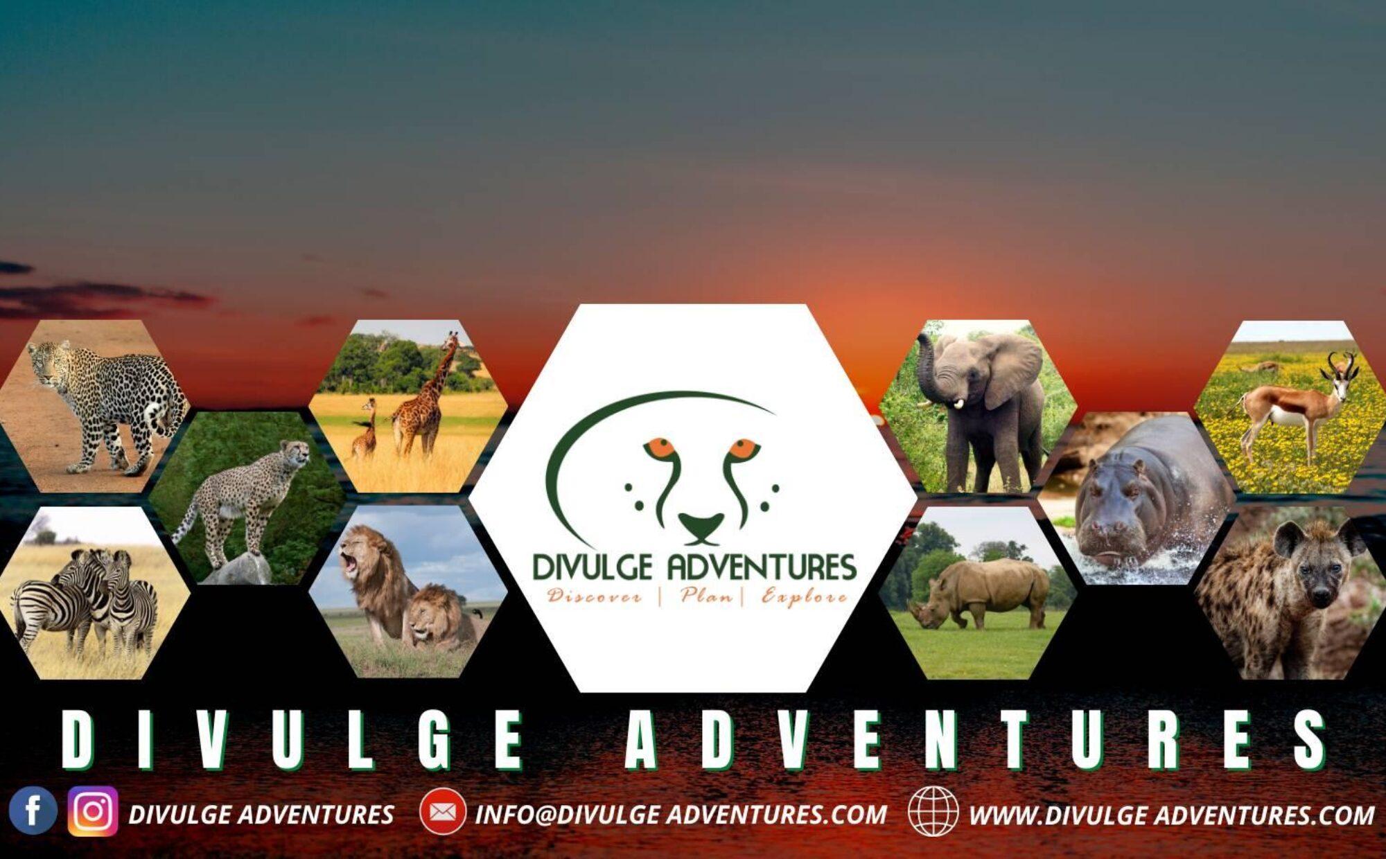Divulge Adventures