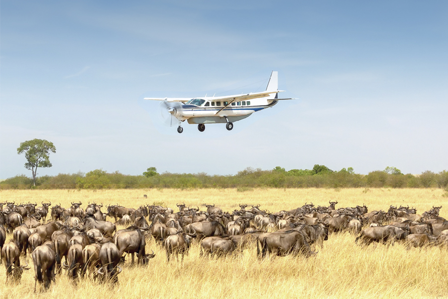 Flying & Balloon Safaris